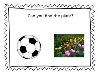 Plant People: Enrichment Activity