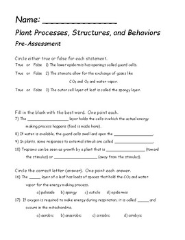 Plant Process, Structures, and Behaviors Pre-Assessment or Test Prep