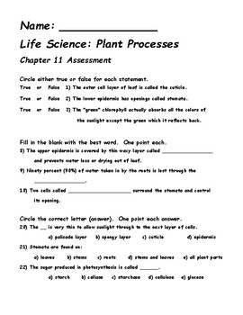 Plant Process, Structures, and Behaviors Test or Final Assessment