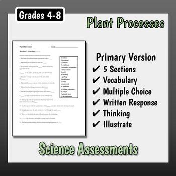 Plant Processes Assessment