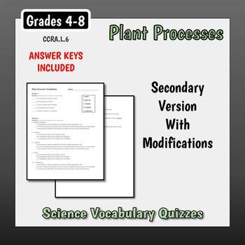 Plant Processes Vocabulary Quiz