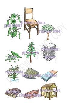 Plant Products Clipart Set