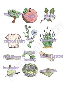 Plant Products Clipart Set