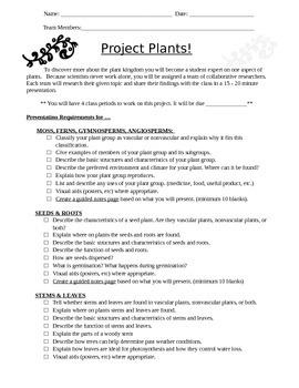 Plant Project Presentation Student Jigsaw