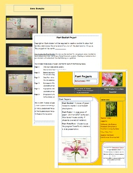 Plant Projects: Standards Based: Poster-Booklet-Powerpoint-Directions