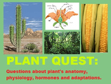 Plant Questions Task Cards or Quest Power Point