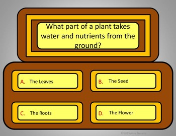 Plant Quiz Game - Power Point