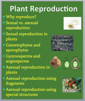 Asexual reproduction in plants pictures