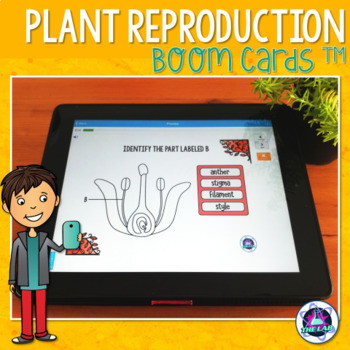 Plant Reproduction BOOM Cards