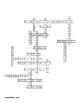 Plant Reproduction Crossword for Biology II