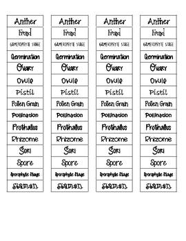 Plant Reproduction Cut-n-Paste Vocabulary