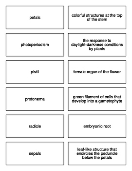 Plant Reproduction Flash Cards For Biology II