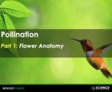 PPT - Pollination: Flowers, Pollinators & Pollination Strategies