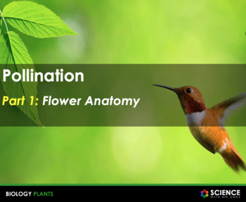 Plant Reproduction: Flowers, Pollinators and Pollination S