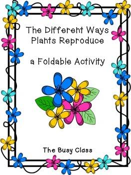 Plant Reproduction Foldable