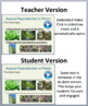 Plant Reproduction - Grade 8 - 10 Biology PowerPoint Lesson