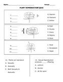 Plant Reproduction Quiz