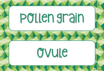 Plant Reproduction Vocabulary Card Sort