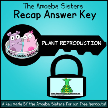 Plant Reproduction in Angiosperms Key by The Amoeba Sisters (Answer Key)