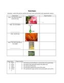 Plant Reproductive Organ Quiz