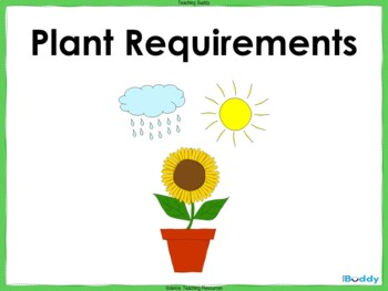 Plant Requirements