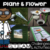 Plant STEAM Activities and Challenges