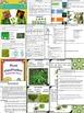 Plant Unit Bundle - Lessons / Worksheets / Activities