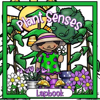 Plant Senses (Tropisms) Lapbook