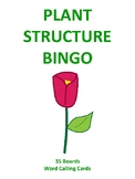 Plant Structure BINGO!