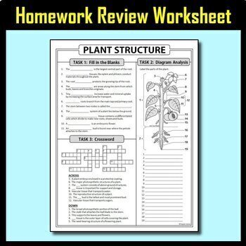 Plant Structure BUNDLE {Editable and Options for Differentiation}