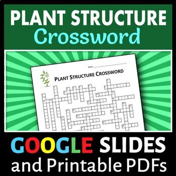 Plant Structure Crossword {Editable}