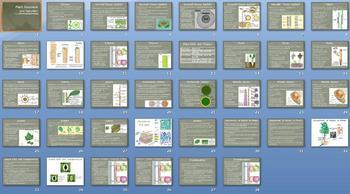 Plant Structure Function Smartboard Notebook Presentation Lesson Plan