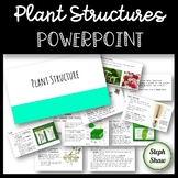 Plant Structures PowerPoint