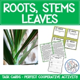 Plant Structure Task Cards