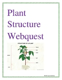 Plant Structure Webquest