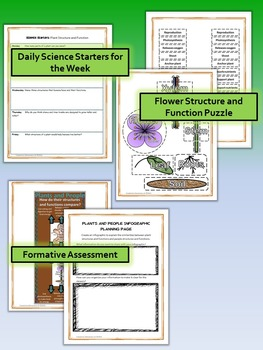 Plant Structure and Function Science and Literacy Set (STAAR & NGSS)