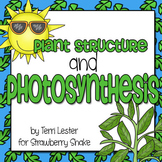 Plant Structure and Photosynthesis:  Reading Comprehension and Modeling