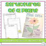 Parts of a Plant Vocabulary and Activities
