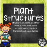 Plant Structures PowerPoint Lesson