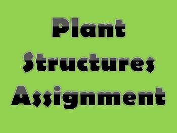 Plant Structures Assignment