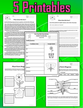 Plant Structures and Flowering Plant Reproduction - Lesson, PPT, Printables