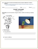 Plant Structures and Functions Vocabulary Build Up (10B)
