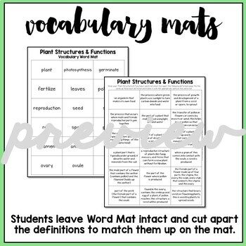 Plant Structures and Functions Vocabulary Mats, Study Slips, and Quizzes