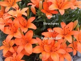 Plant Structures for Reproduction - Parts of a Flower