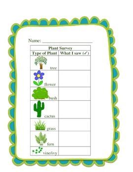 Plant Survey