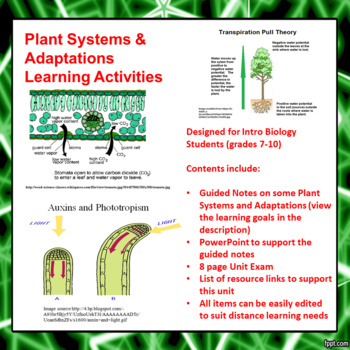 Plant Systems and Adaptations Lesson Activities