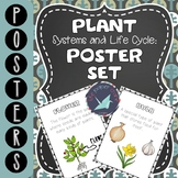 Plant Systems and Life Cycles: Poster Set