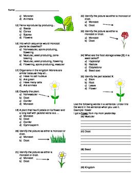 Plant Test 1