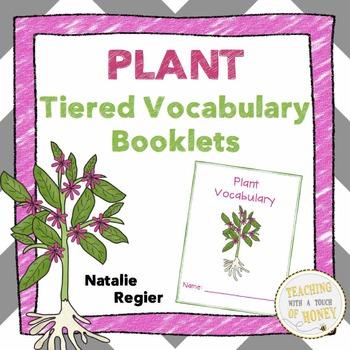 Vocabulary Activities | Vocabulary Graphic Organizers | Plants Vocabulary