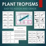 Plant Tropisms (Gravitropism, Phototropism, Thigmotropism)